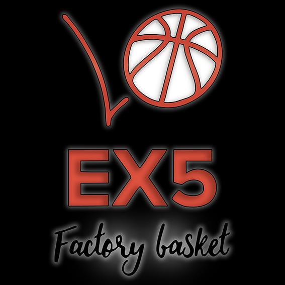 ex5factorybasket